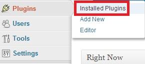 installedplugin - Cara install dan uninstall plugin di WordPress